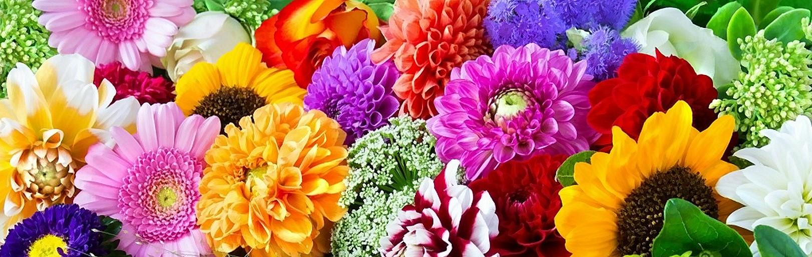 Blumen kronm ller lieferservice for Pflanzen lieferservice